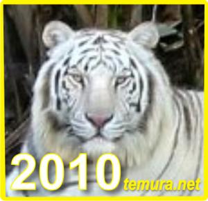 Izto4en 2010